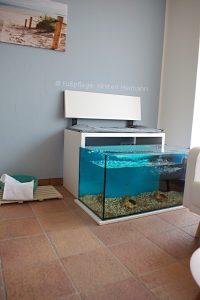 Fisch Spa Heimann 3