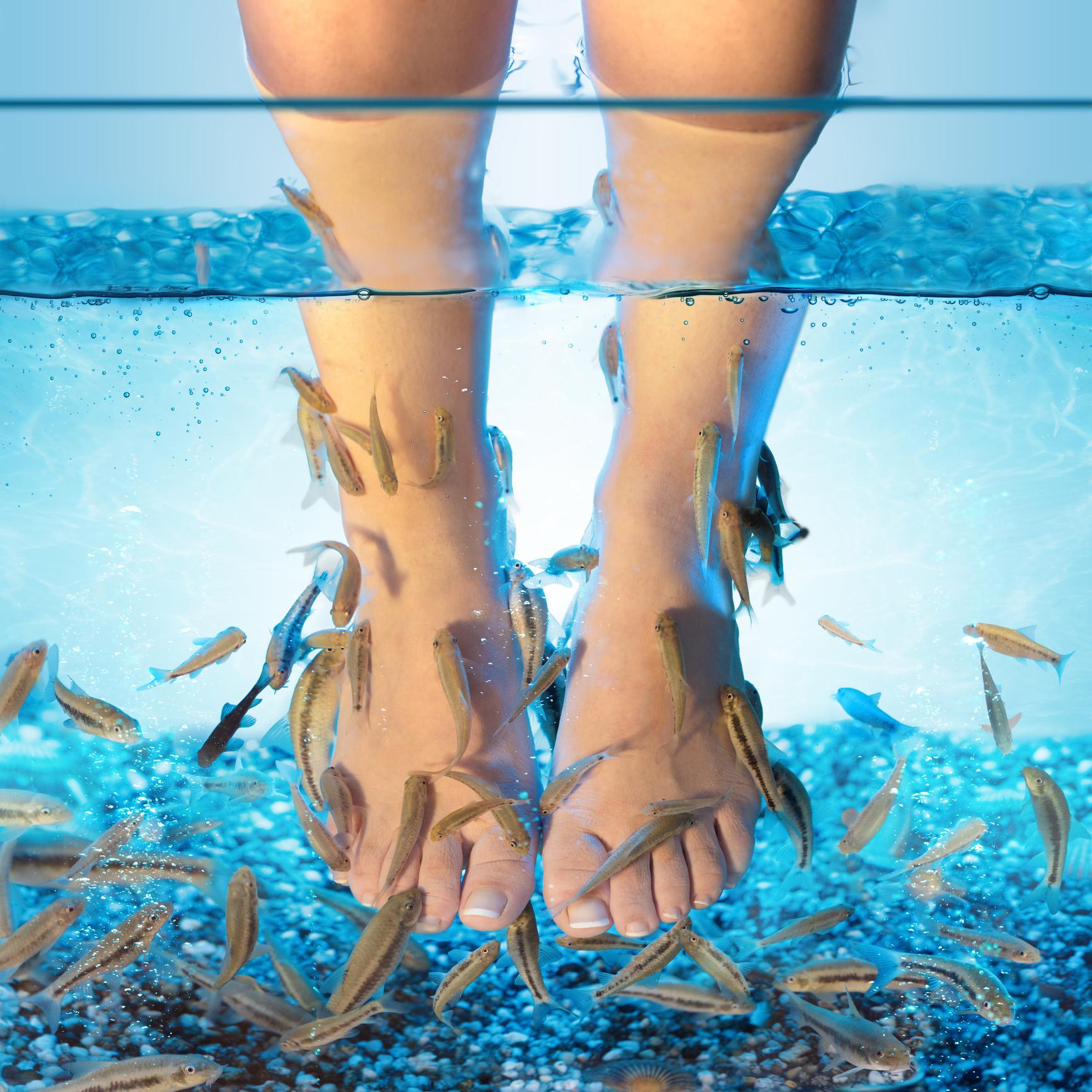 Institut für Fußpflege & Wellness